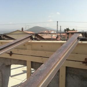 carpenteria9
